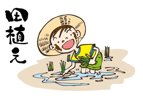 夏至祭りの気持ちと日本の風習