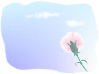 母の日のカーネーションの色には気をつけて!2