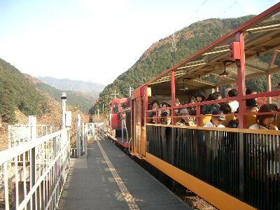 京都の嵯峨野トロッコ列車に乗って自然に親しもう!