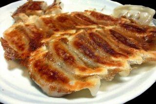 餃子(ぎょうざ)が川崎にやってくる!全国餃子まつり